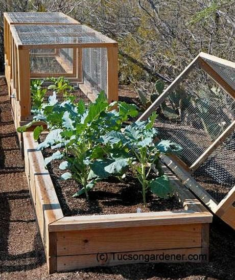 26 Great ideas for a vegetable garden in DIY wooden beds