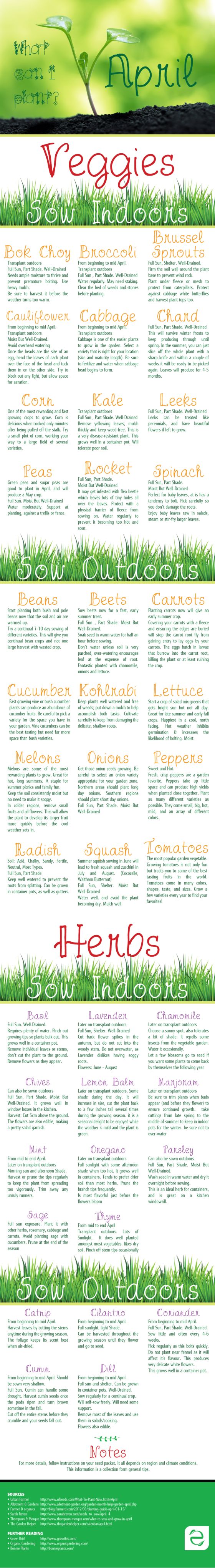 What Can I Plant In April Infographic Organic Gardening Tips Organic Gardening Organic Vegetable Garden