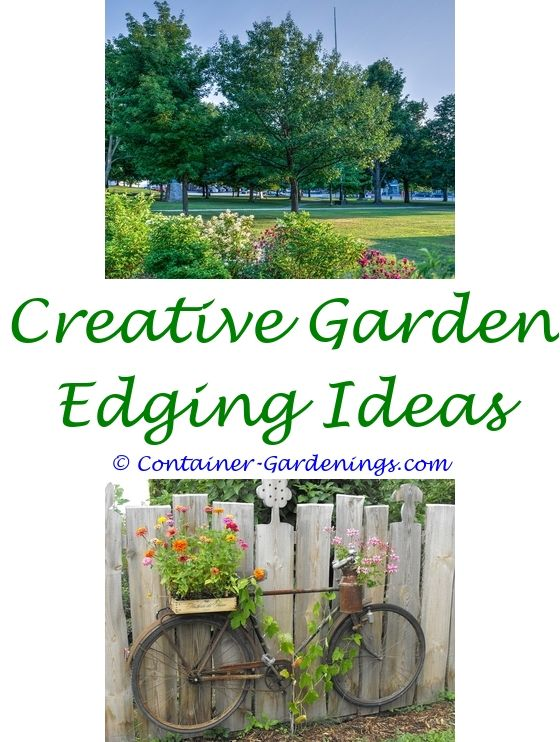 Home Garden Setup | Garden ideas, Paving ideas and Bali garden