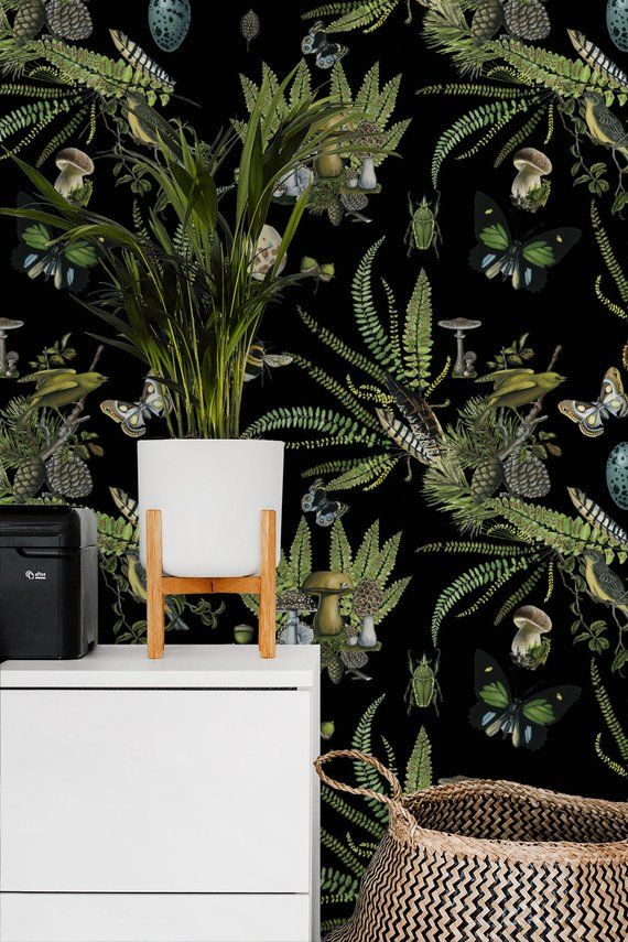 Naturalist Black Removable Wallpaper Birds And Plants Peel And Stick Wallpaper Wall Mural Ferns With Images Dark Wallpaper Temporary Wallpaper Removable Wallpaper