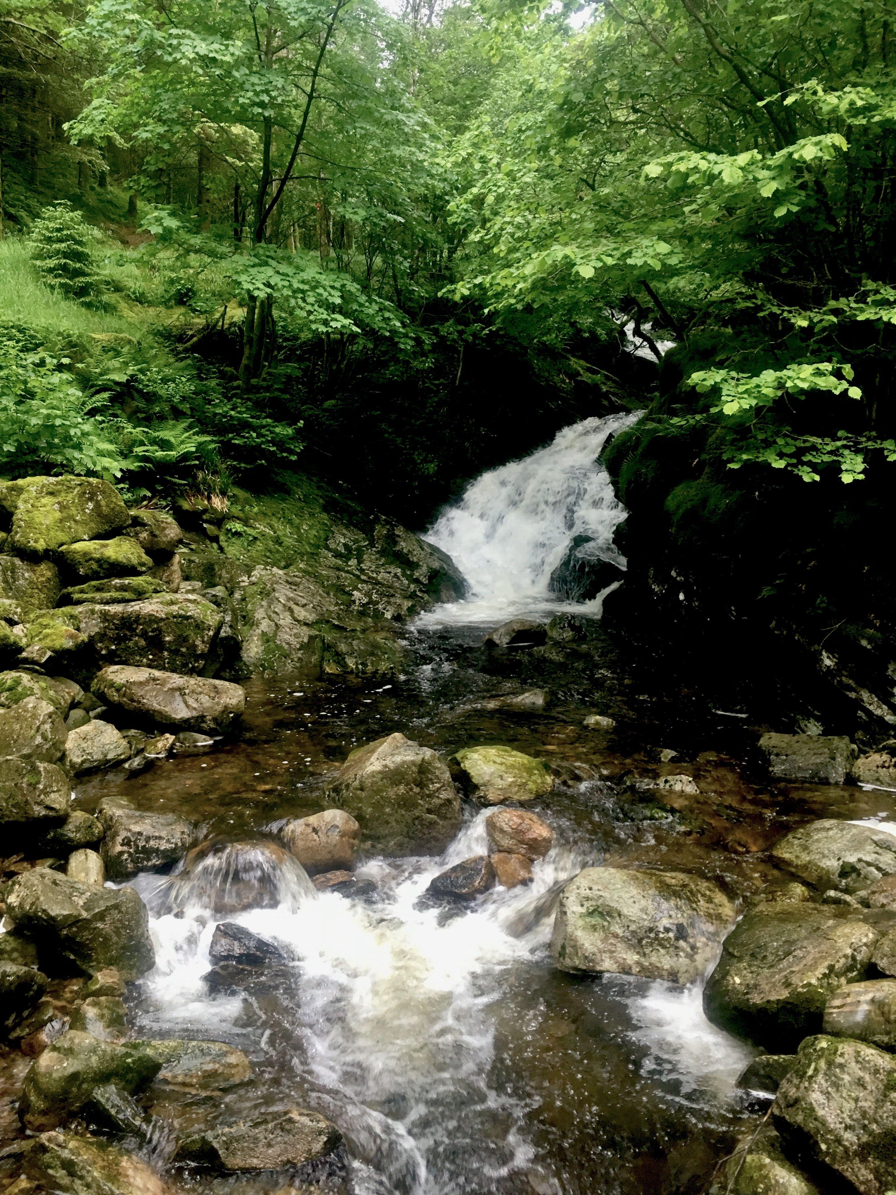 Bergen, small waterfall