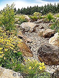Residential Irrigation Services Landscape East  Westeast