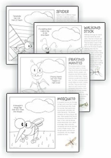 Printable Bug Facts Coloring Pages | Girl Scouts | Dibujos de ...