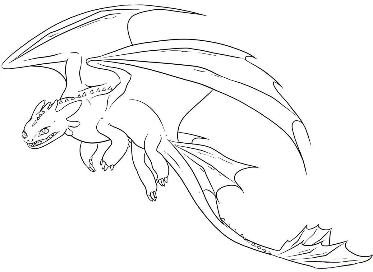 Night Fury Coloring Pages Free Realistische Drachen Drachenzahmen Leicht Gemacht Drachenzeichnungen