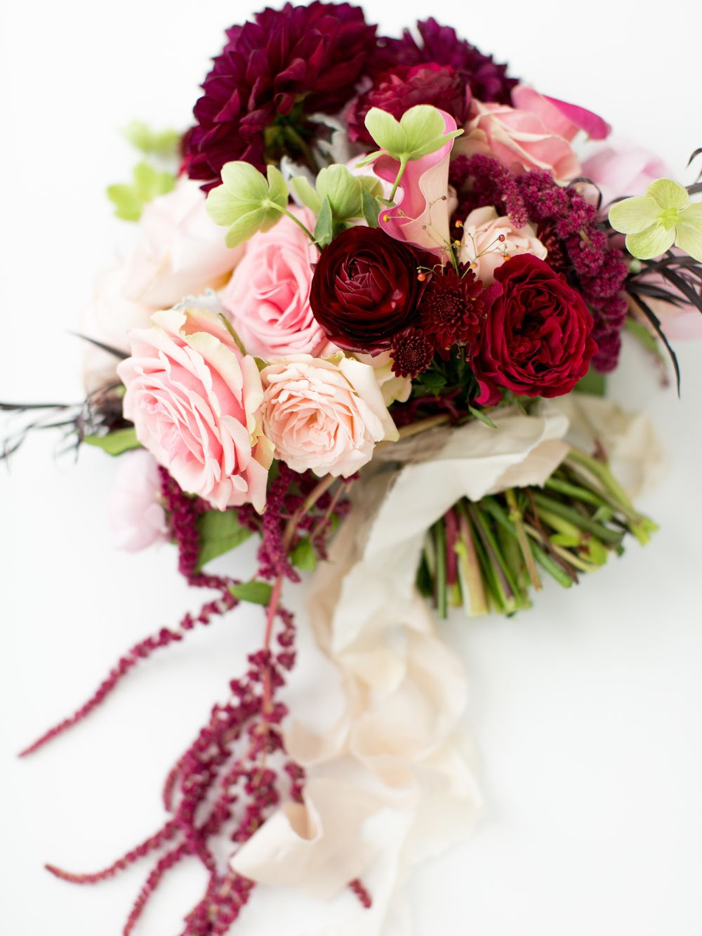 Late Spring Burgandy Pink Dahlia Rose South