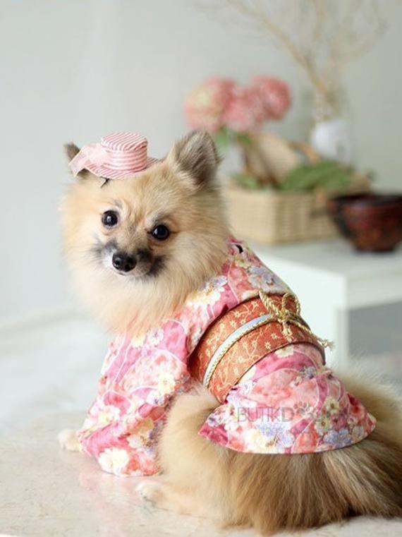 Japanese Kimono Dog Costume Dog Costume