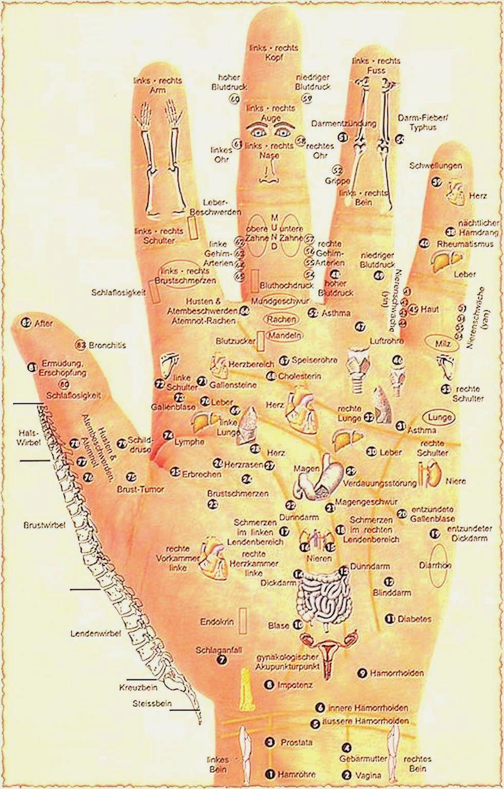 Image result for punkt am finger akupuntur