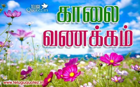 Kalai Vanakkam Tamil Good Morning Quotes Teluguquotezin Good