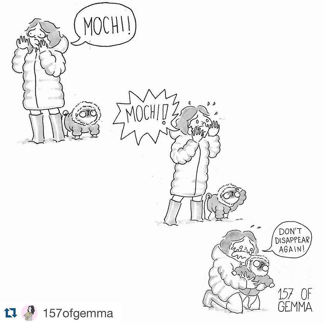 """Dis is Ma ebery time I get to go off-leash. No exception."" ------------------------------------------ #Repost @157ofgemma with @repostapp. I ""lost"" Mochi 3 times yesterday one of them inside the house. I freak out because I can't see him and I can't see him because he's right next to me...#smalldogproblems ...................................................................... by pugridesshotgun #mypugfriends #pug #pugs #puglife #pugsofinstagram #puggle #puglove #pugpuppy #pugstagram…"