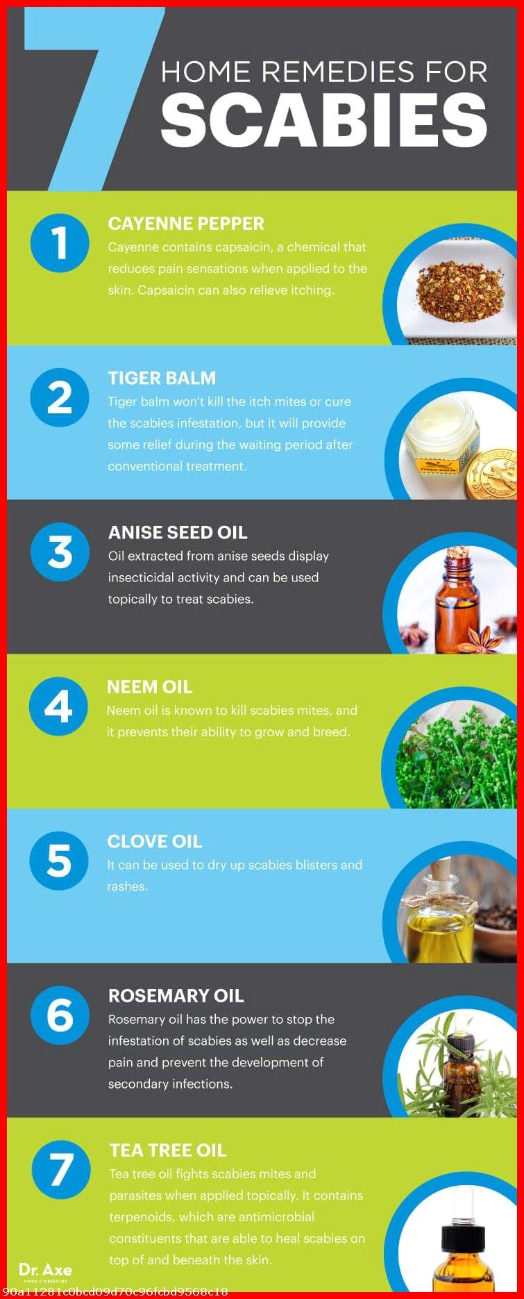 Puppy Training Tips O8v7 Home Remedies For Scabies Natural Healing Remedies Remedies