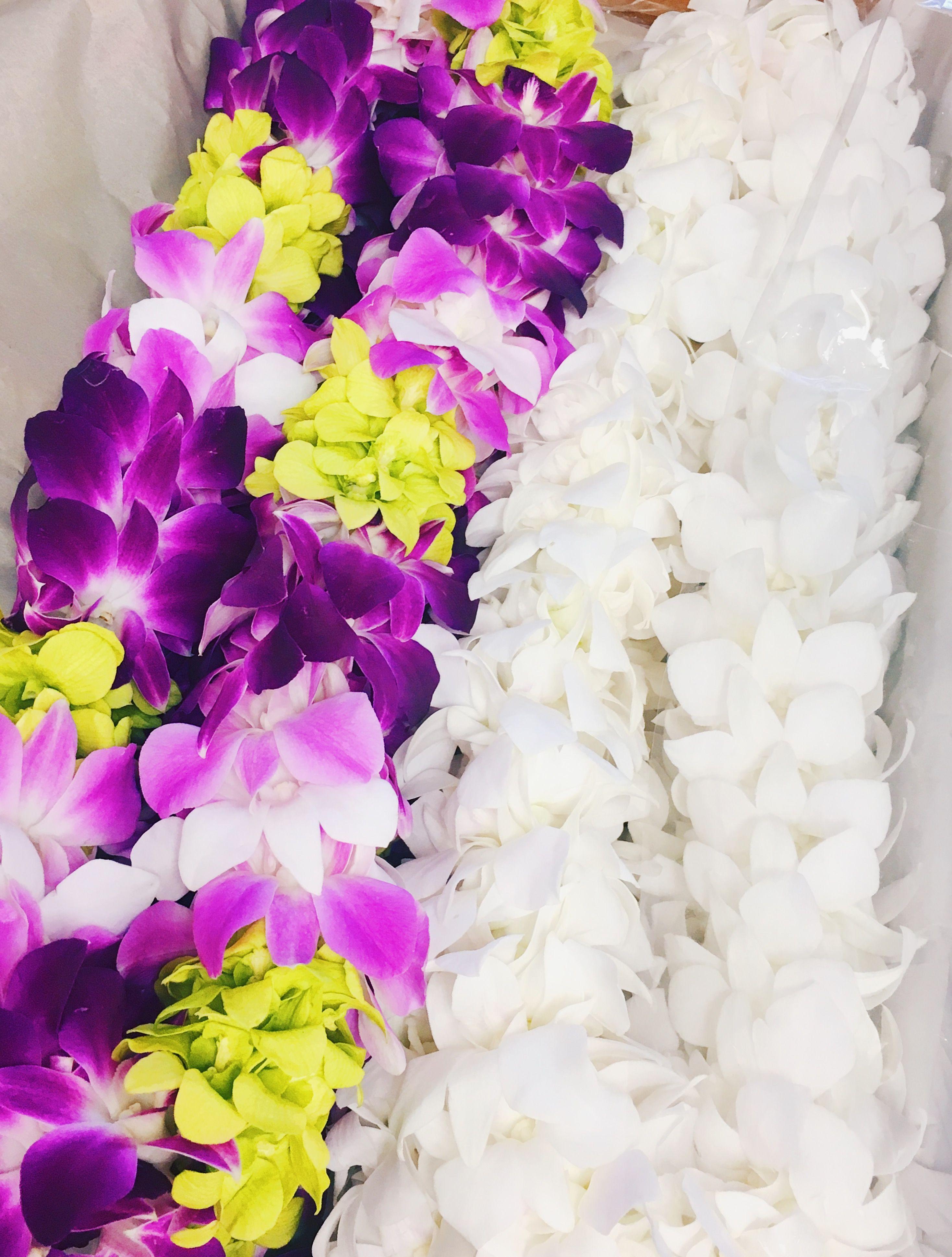 Double orchid leis hawaiian leis pinterest leis double orchid leis izmirmasajfo
