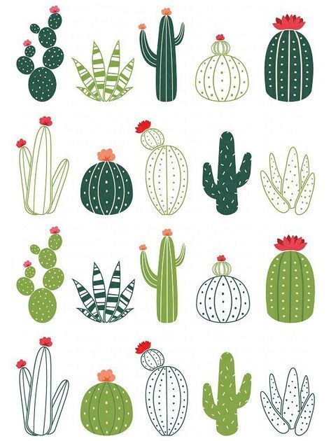 Photo of Cactus design elements. Decoration #cactus #cacti