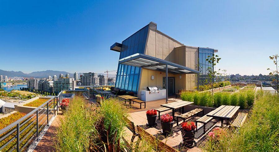 dream roof deck Modern townhouse