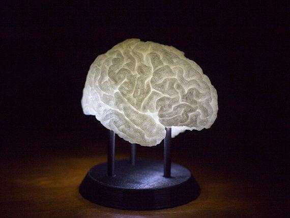 3d Printed Led Lit Brain Lamp Etsy Lamp 3d Printing Brain