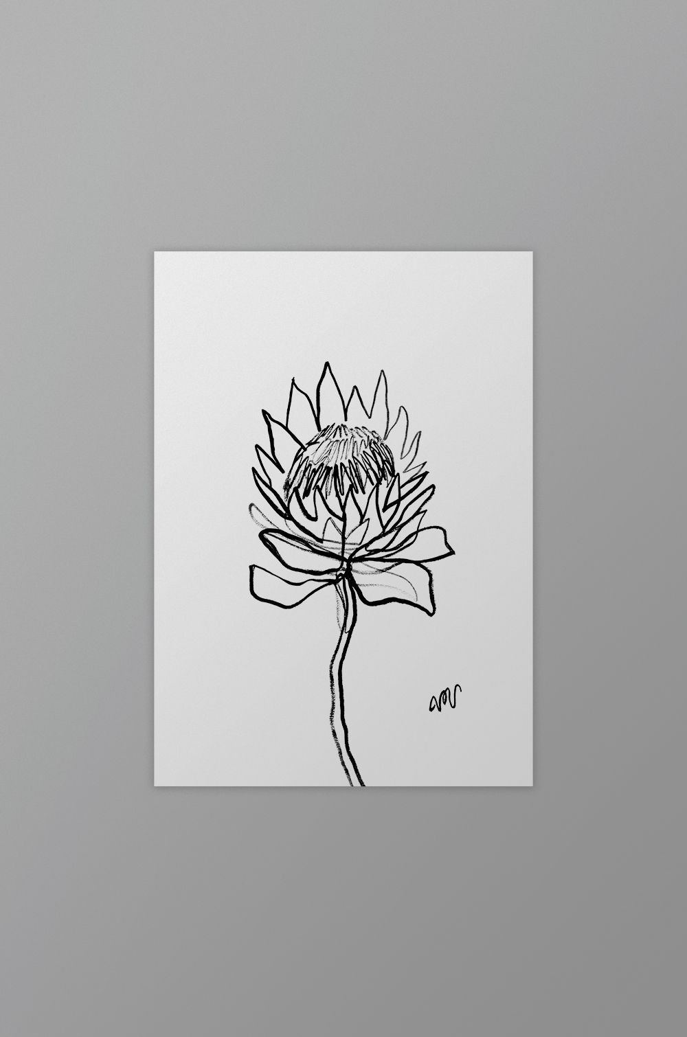 d33208136 Protea (3) Single Line Drawing | New art works | Single line drawing ...