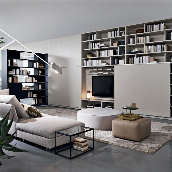 505 bookshelves and multimedia molteni