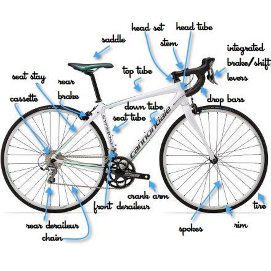 Parts Of The Bike Labeled Cycling For Beginners Bike Ride Bicycle