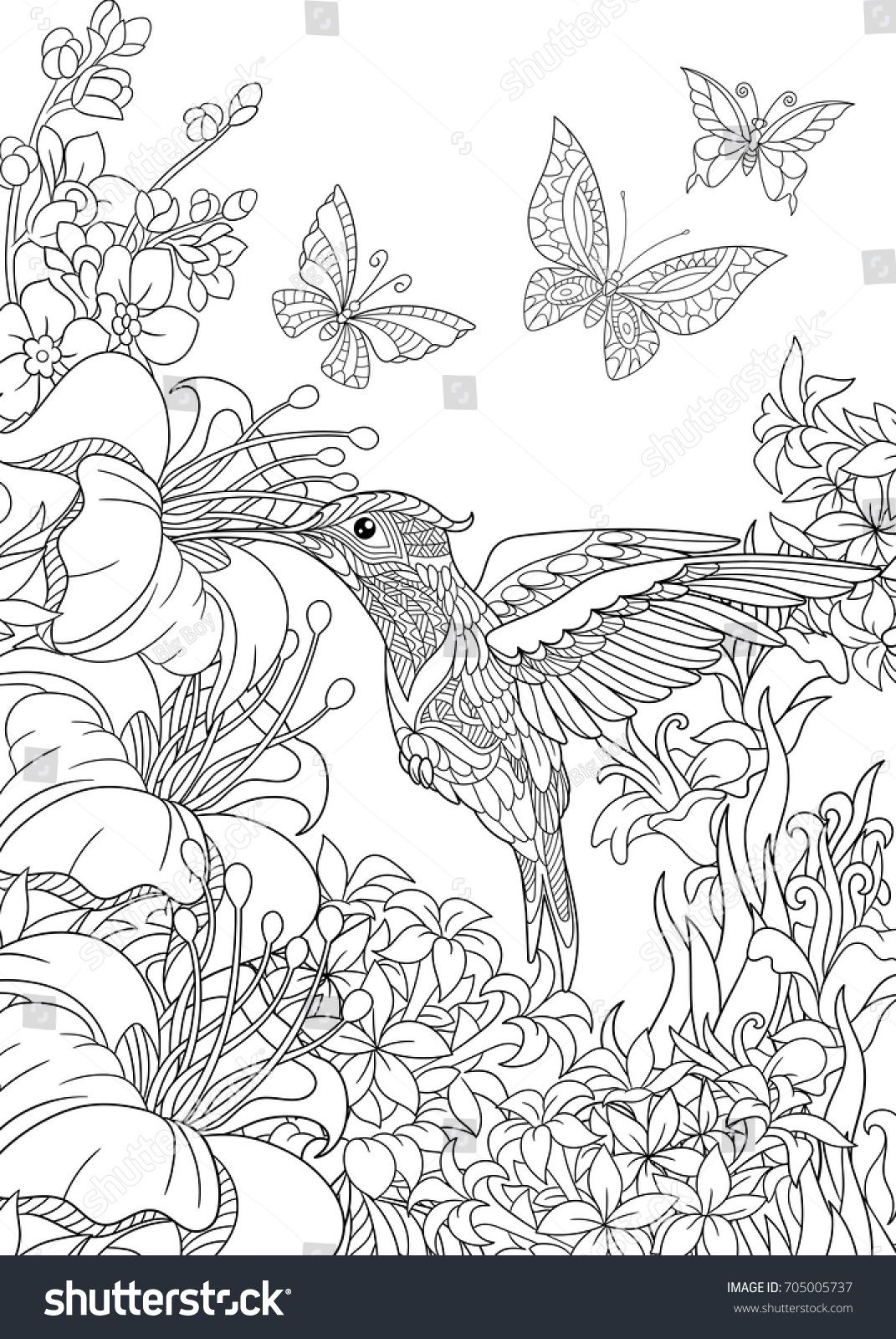 Coloring Page Of Hummingbird Butterflies And Hibiscus Flowers