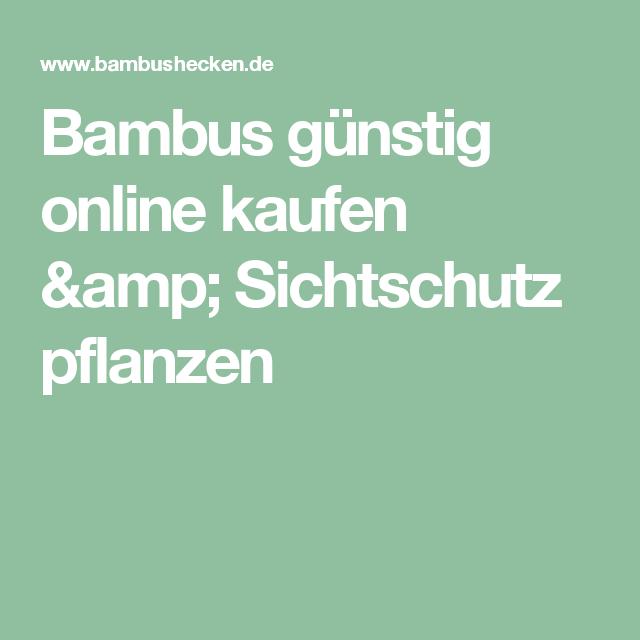 bambus günstig online kaufen & sichtschutz pflanzen | garten, Best garten ideen