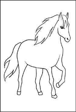 pferd - window color bild | malvorlagen pferde