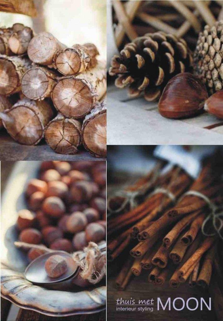 pinecones, cinnamon bark and other autumn lovely-ness. #autumn #fall #seasons