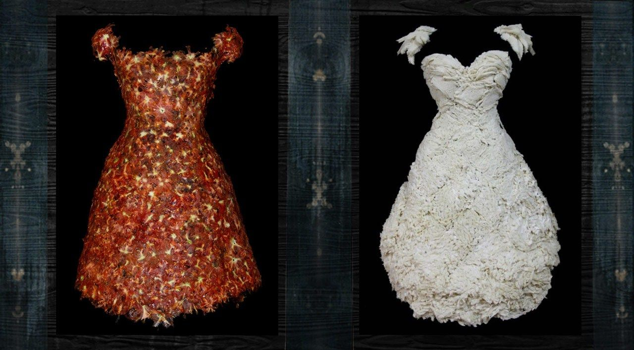 Edible Fashion The Wereable Food By Yeonju Sung Avec Images Nourriture