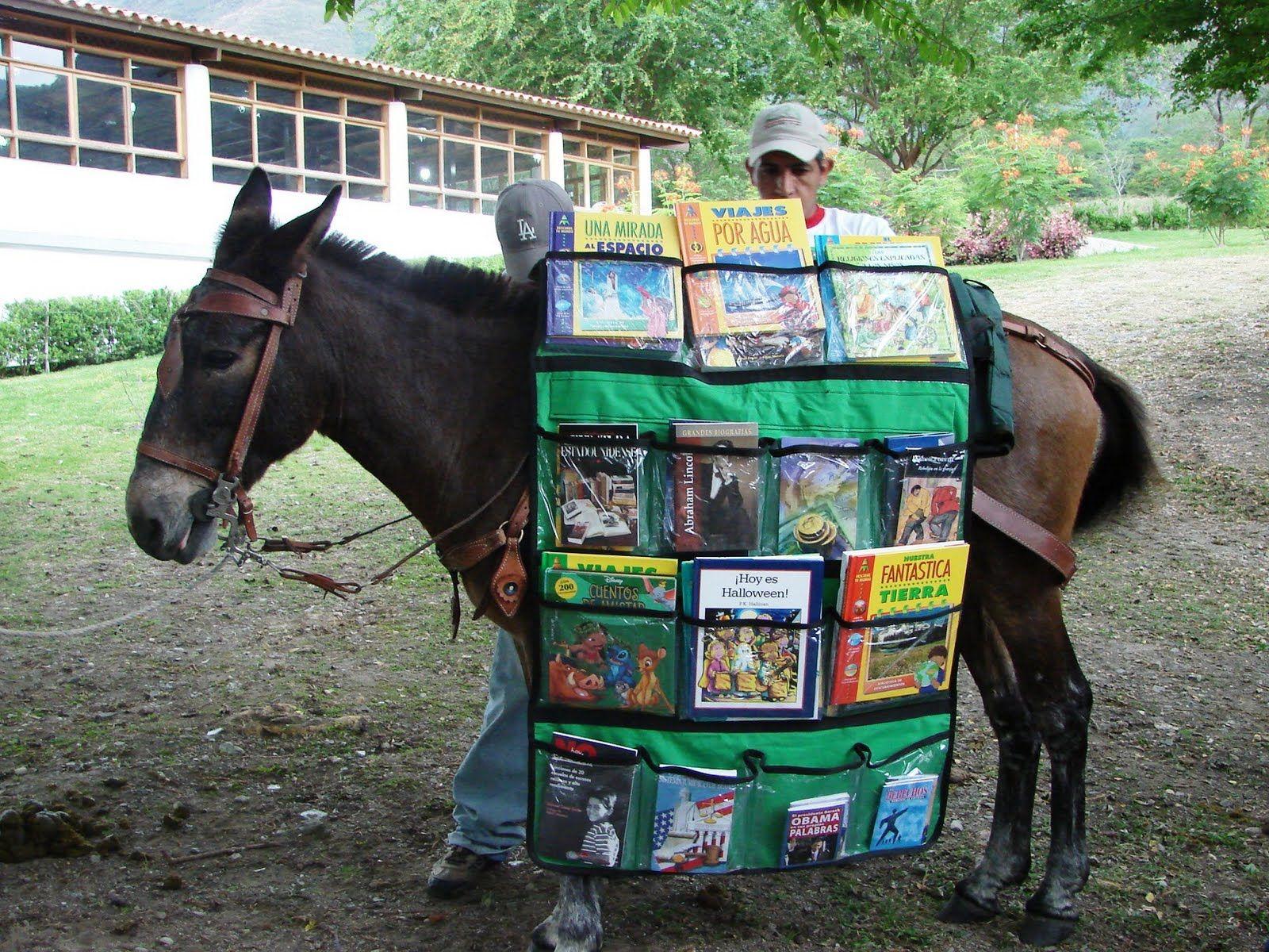 Bibliomulas a new job for our mule john boy picture