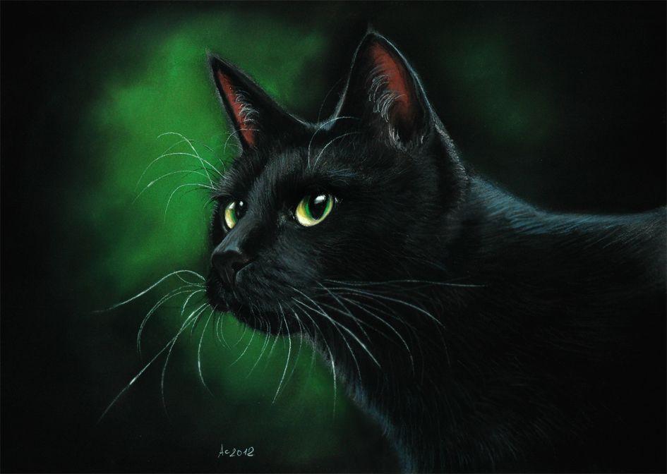 Nighthawk black cat by art-it-art.deviantart.com on @deviantART