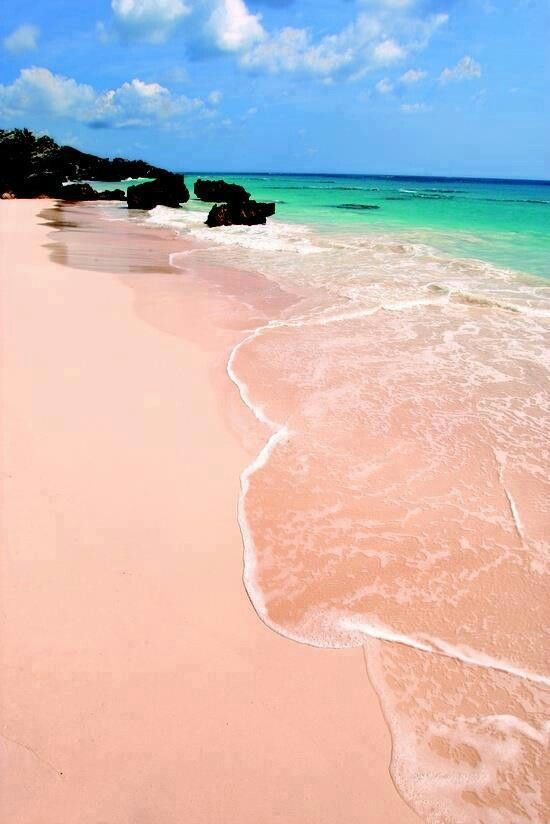 Pink sand beach bermuda,  I Want to be there now!! PINK sand!! xx