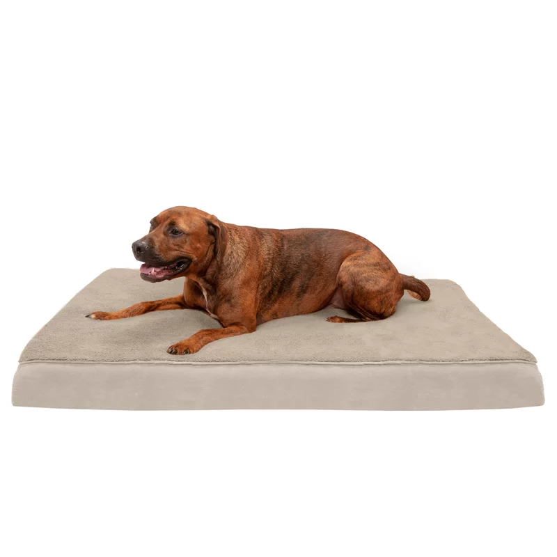 Dog Beds You Ll Love In 2020 Wayfair Orthopedic Pet Bed Dog Bed Large Orthopedic Dog Bed