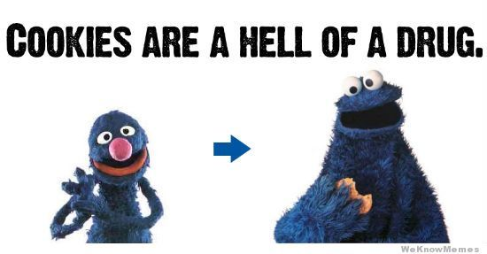 0786bc6e0d22db92757c2675ef11609b oh cookie monster lol cookies are a hell of a drug brilliant