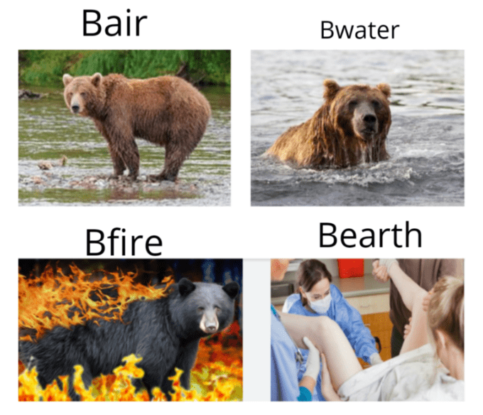 Fifteen Four Elements Memes That Offer A Dumb Play On Words In 2021 Funny Animal Jokes Stupid Funny Memes Dumb And Dumber