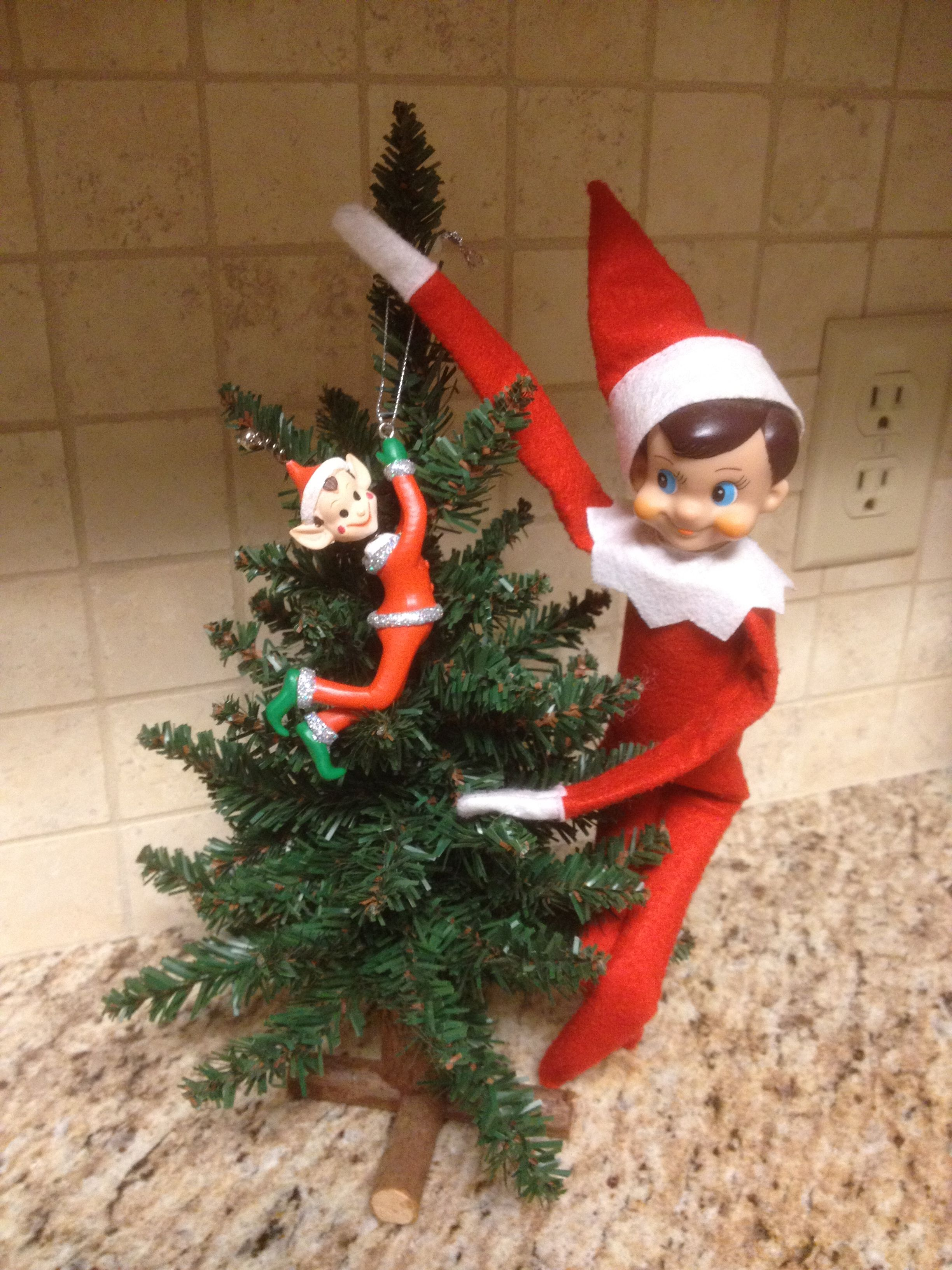 Elf On A Shelf Brought A Mini Tree An Elf Ornament Love This Then You Can Bring It Out Every Year The Day Before You W Xmas Elf Elf