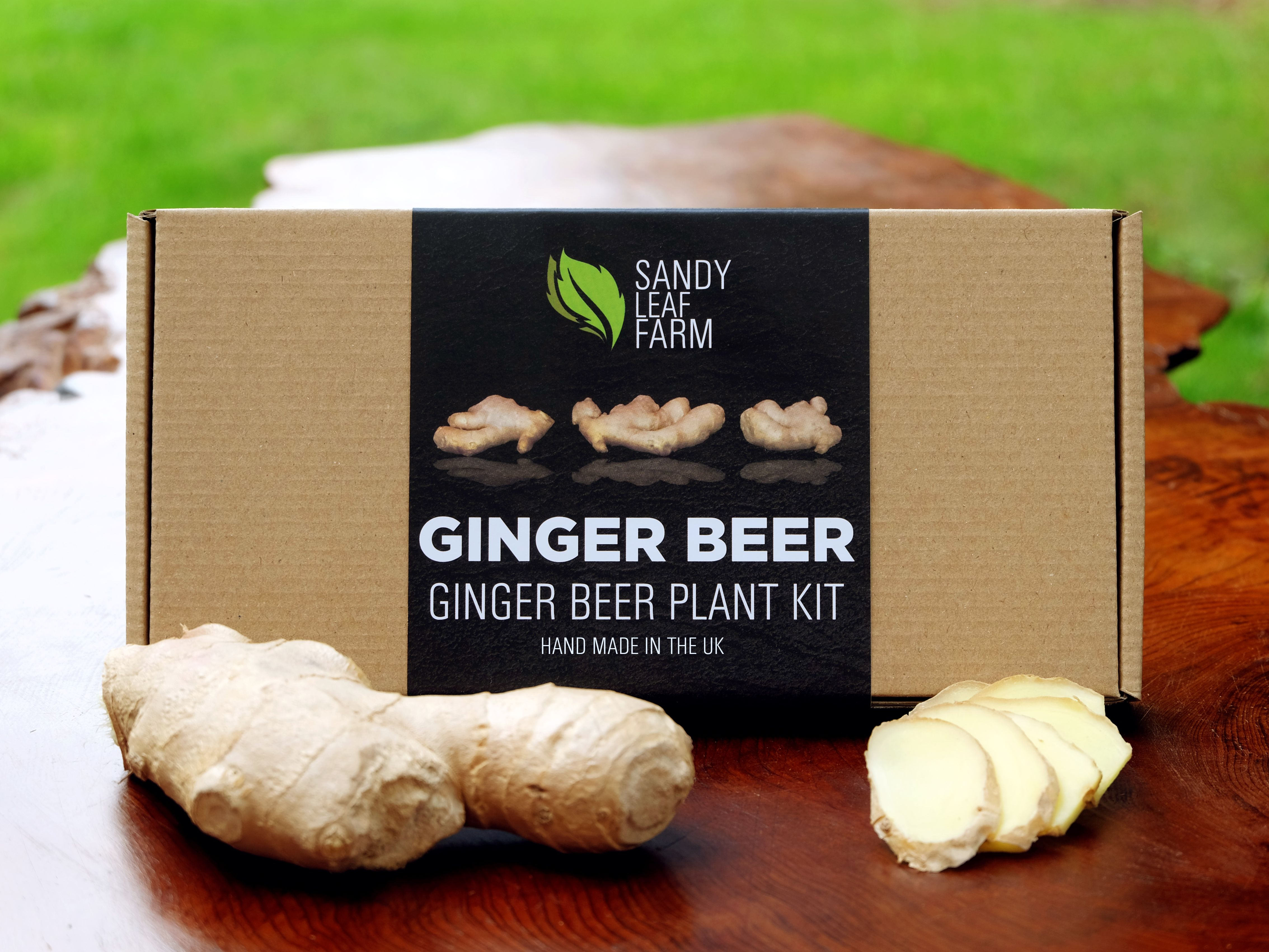 how to make real ginger beer