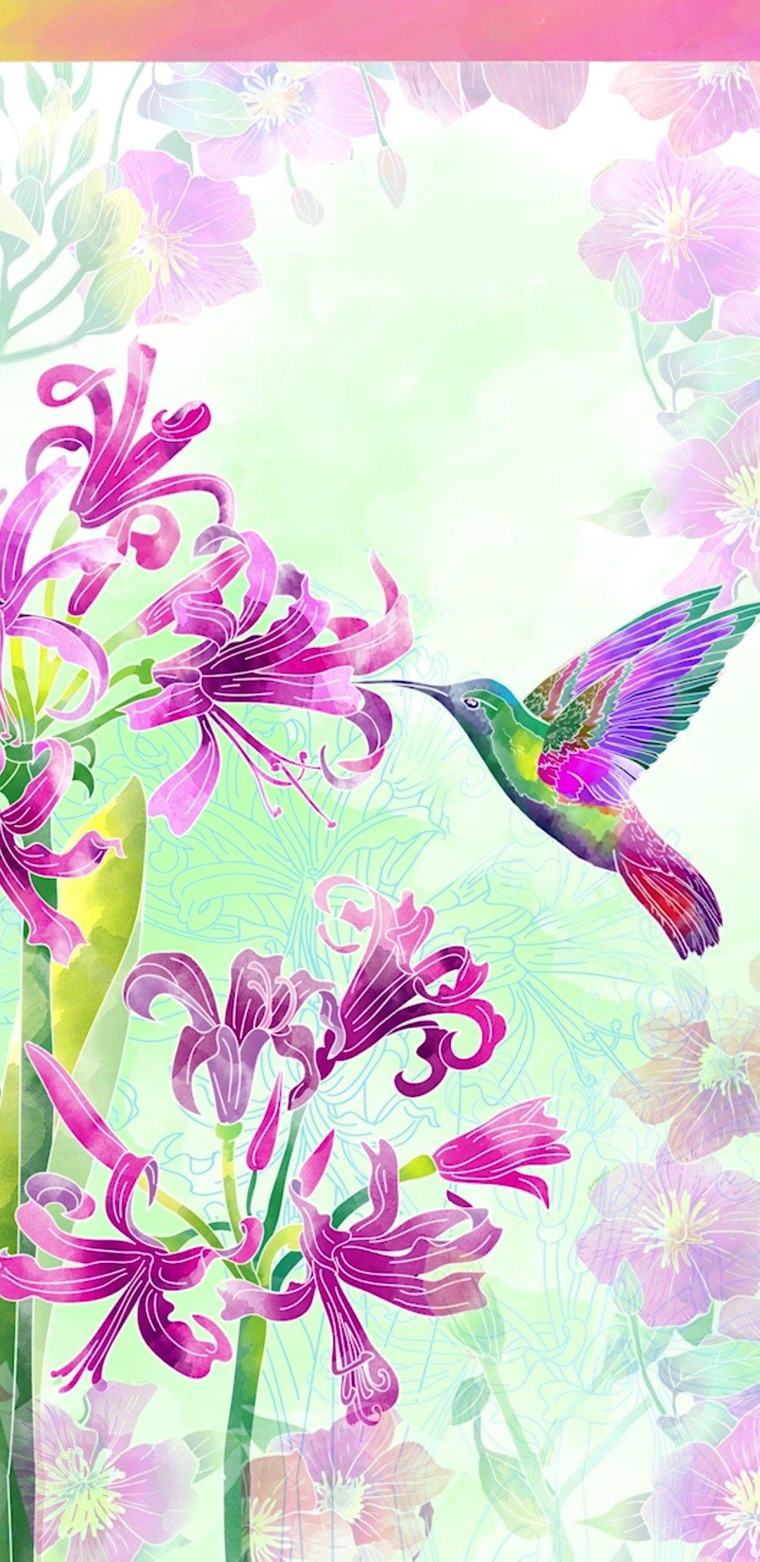 Wallpaper By Artist Unknown Hummingbird Wallpaper Plain Wallpaper Iphone Flowery Wallpaper