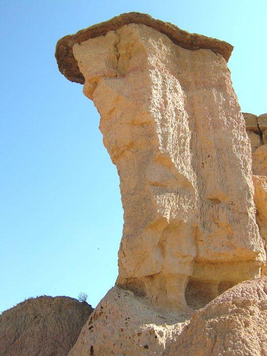 monegros: Castelflorite