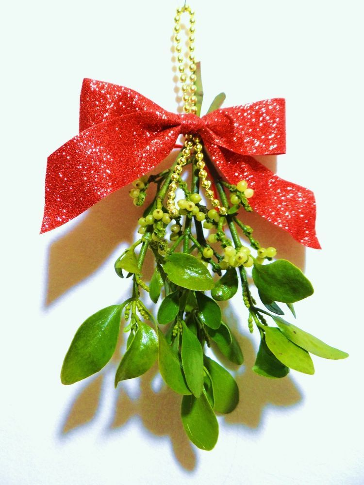 6 Real Live Fresh Mistletoe Plant Christmas Holiday Hanging Decor Red Ribbon Unbranded In 2020 Christmas Tree Clipart Mistletoe Plant Mistletoe