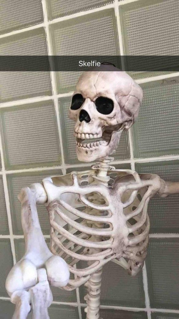 My Dad Simultaneously Discovered Snapchat And Started Decorating For Halloween This Is The Result Odd Stuff Magazine Snapchat Funny Halloween Memes Funny Skeleton