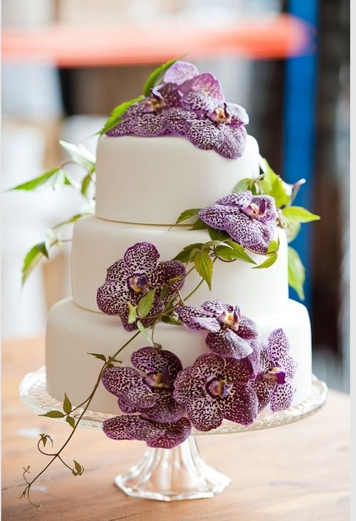 Cake with purple flowers found on teagreenchandelier flowers cake with purple flowers found on teagreenchandelier summer wedding cakeswhite mightylinksfo