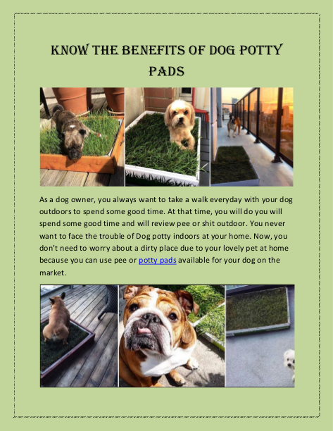 Know The Benefits Of Dog Potty Pads As A Dog Owner You Always Want To Take A Walk Everyday With Your Dog Outdoors To Spend Some Good Tim In 2019 Dog