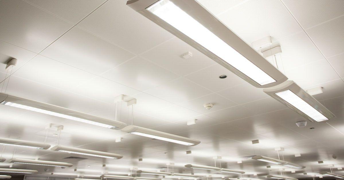 Lupus And Fluorescent Lights: Artificial Light Sensitivity