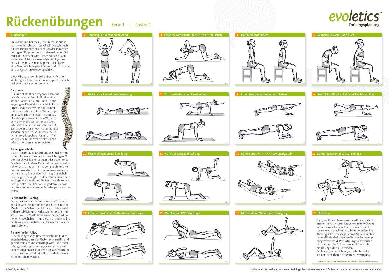 Charmant Bild Lws Zeitgenössisch - Anatomie Ideen - finotti.info