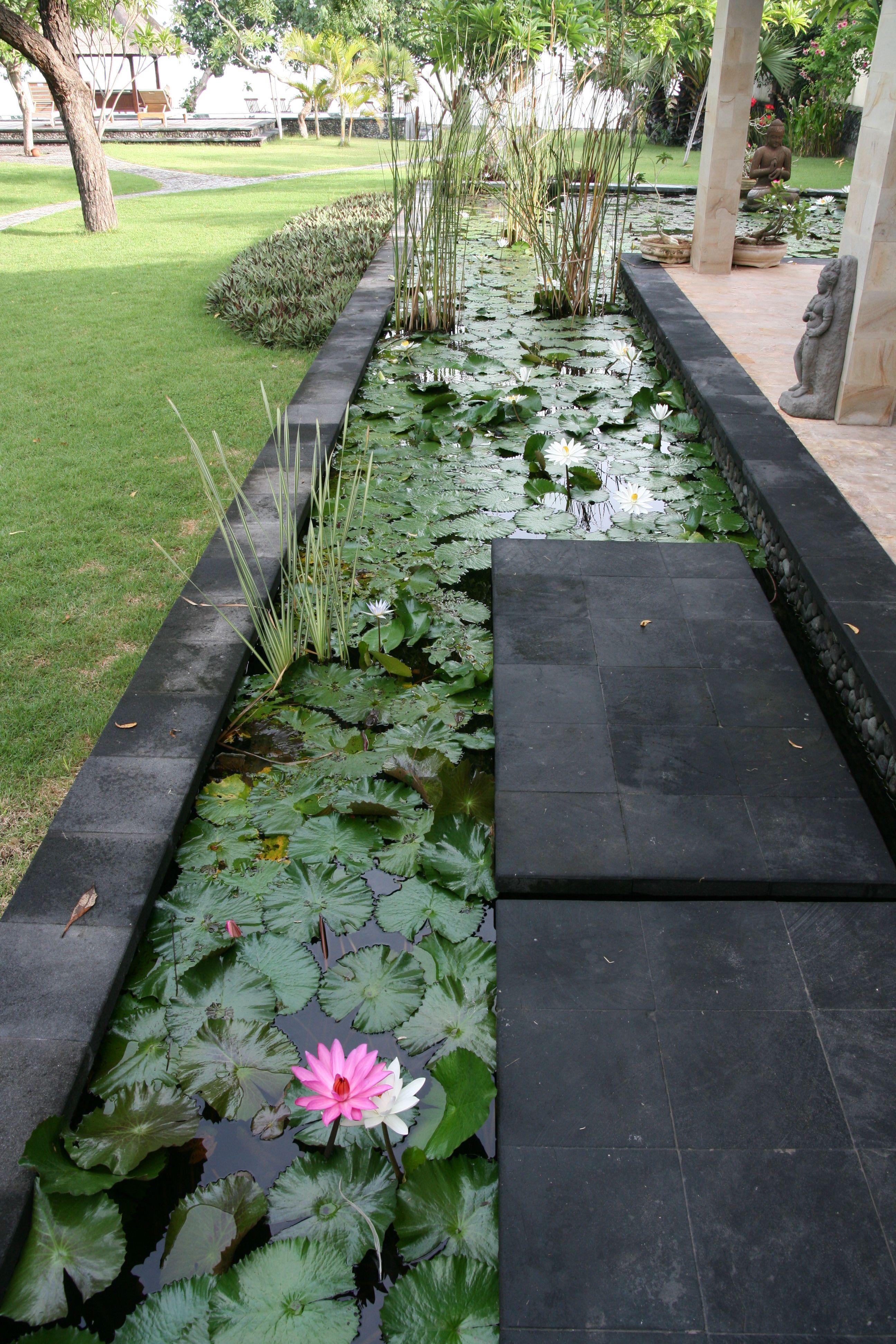 Garden water features  Pond around the dining area villa Semadhi Pemuteran  Everyones