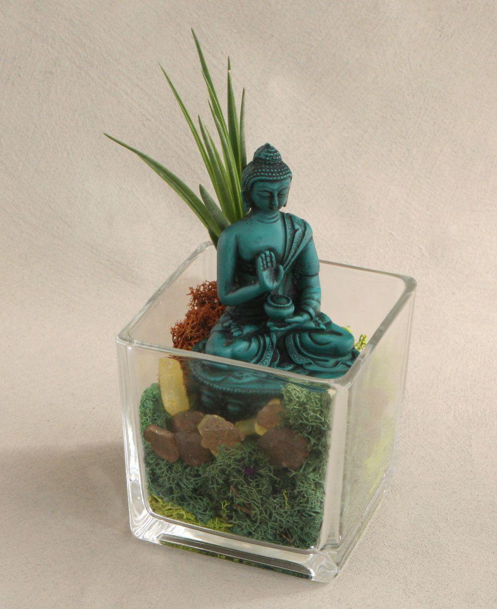 Turquoise Buddha Living Terrarium Teal Pinterest Terrarium