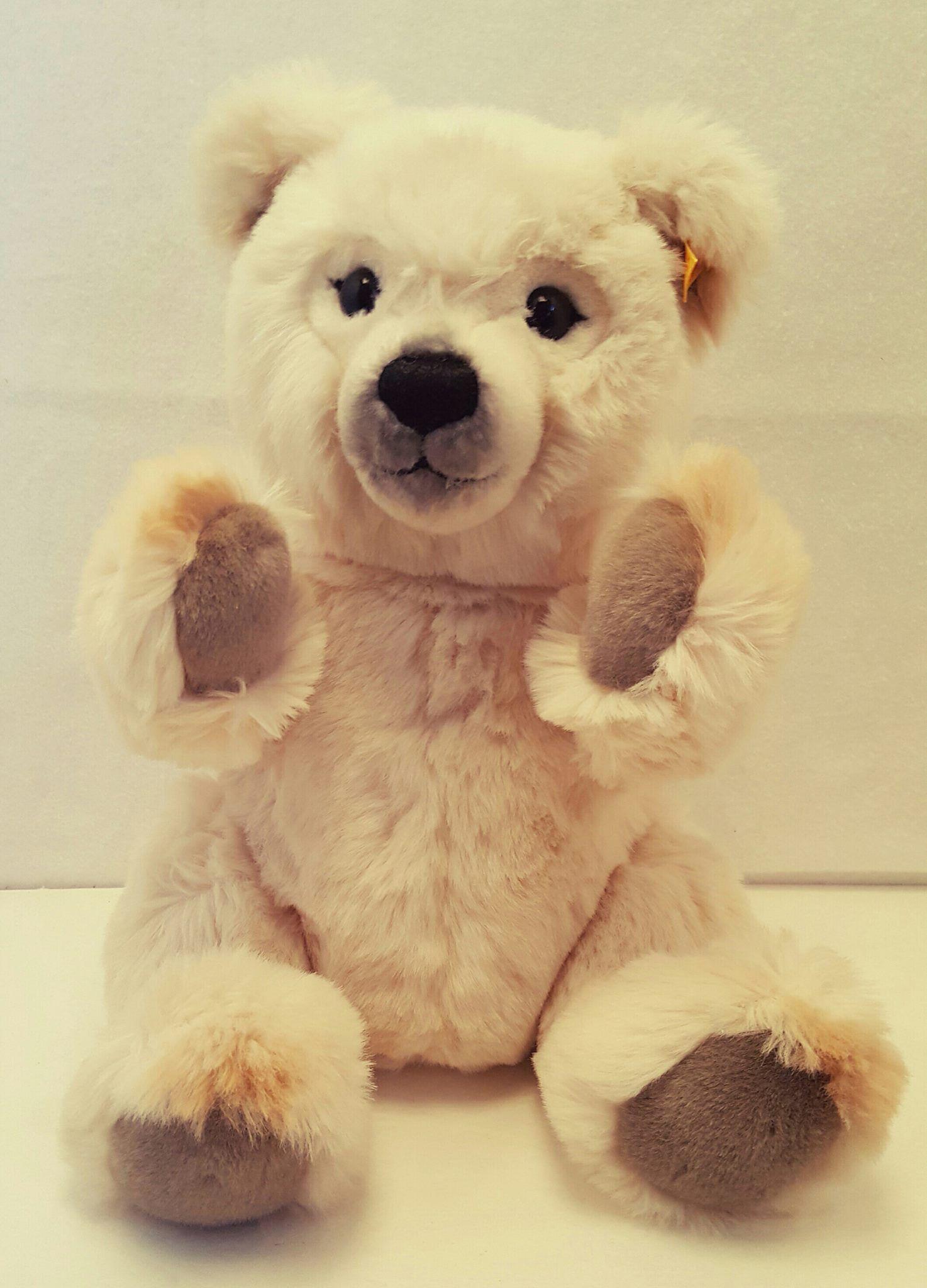 I sold it on ebay! Ebay, Teddy, Selling on ebay