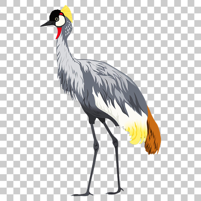Crane Stork Bird Png Image With Transparent Background Bird Png Images Stork Bird
