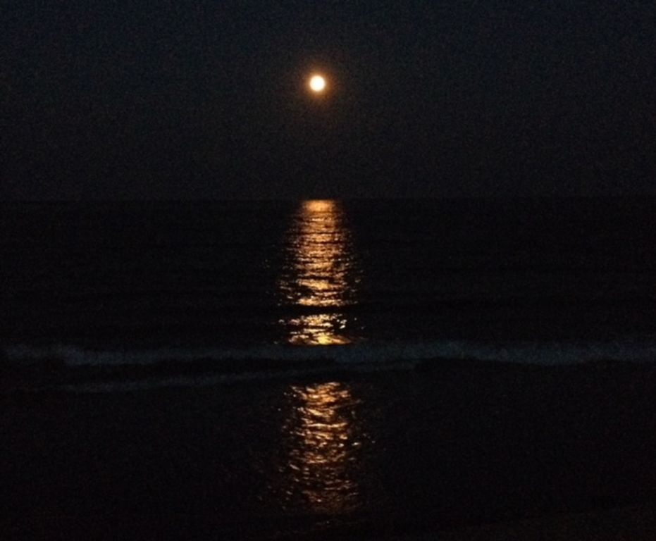 zillow hampton beach nh