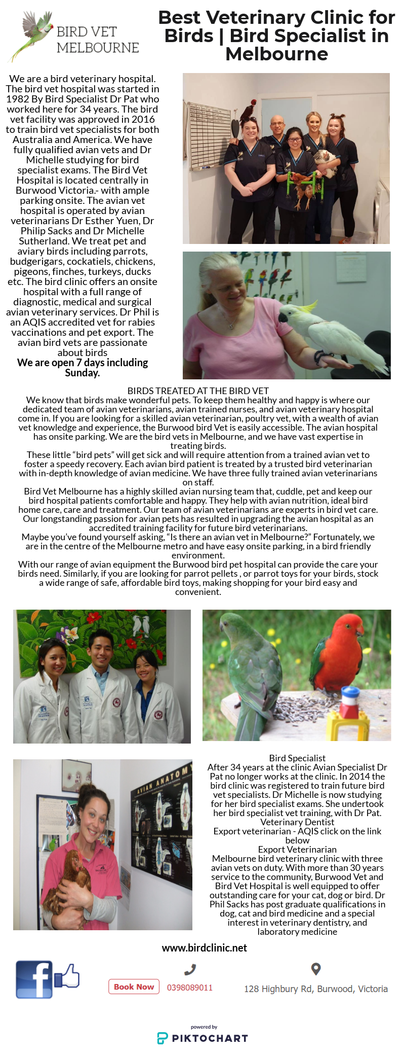 Are You Looking For Best Veterinary Clinic For Birds Bird Vet
