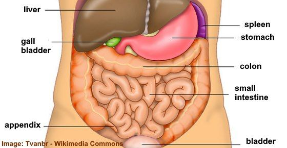 Right Side Abdominal Pain In Men And Women What Does It Mean