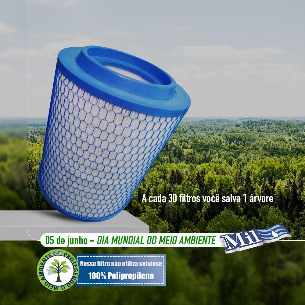 05 De Junho Dia Mundial Do Meio Ambiente Pense Verde